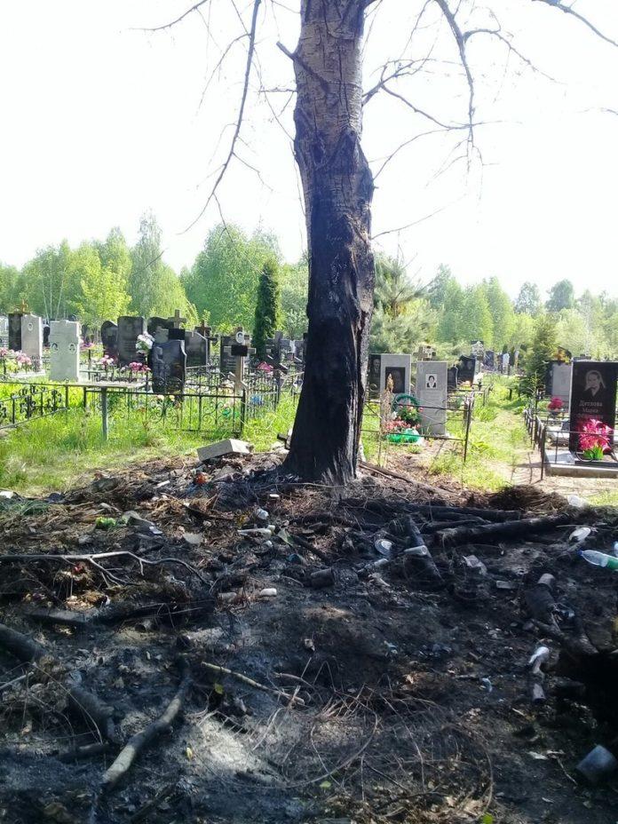 ульяновск онлайн ульяновск сегодня лайф 73 ульяновск 73 life73 Устроили свалку на могилах, а потом все подожгли». Жители Ульяновска жалуются на бардак на Ишеевском кладбище