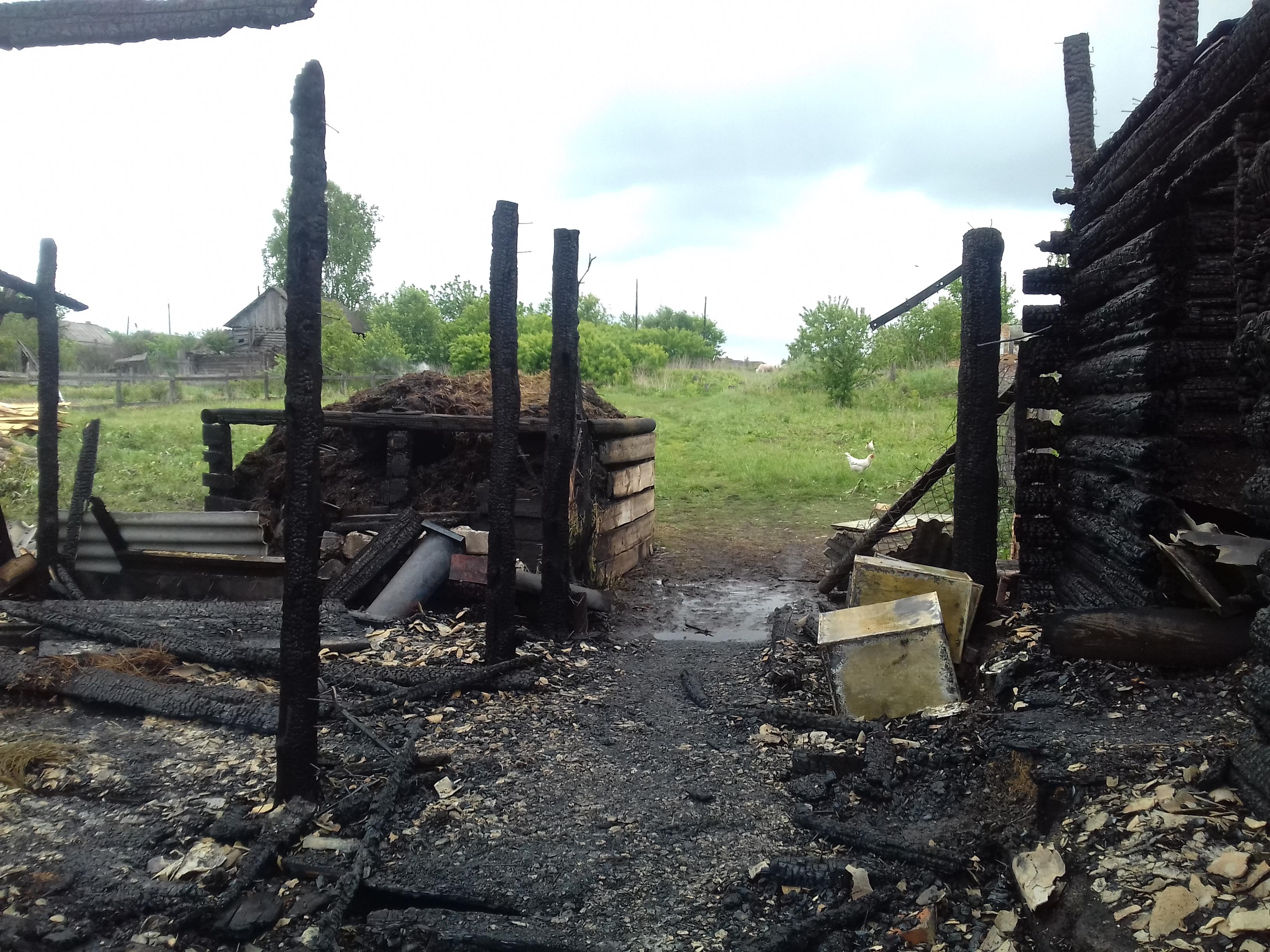 В базарносызганском селе подожгли конюшню и крольчатник: погибли корова и 75 кроликов поджог,