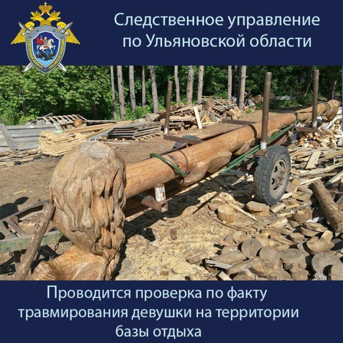 Следователи начали проверку по факту травмирования девушки в Архангельской слободе долгановский