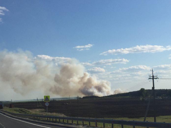 Крупный пожар 17.06.2018 горит лес за Большими Ключищами