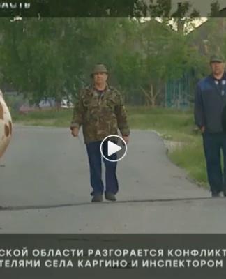 Коровы стали причиной конфликта инспектора ГИБДД и жителей села в Ульяновской областиКоровы стали причиной конфликта инспектора ГИБДД и жителей села в Ульяновской области