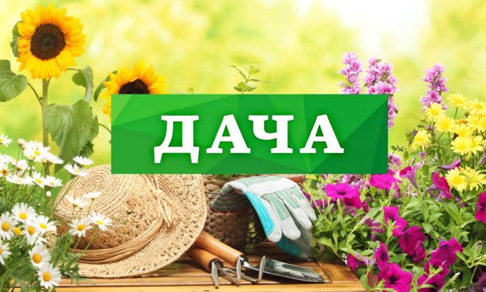 В Ульяновске организуют дополнительный рейс по маршруту №95