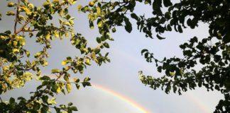 10 июля в Ульяновске обещают дождь и грозу