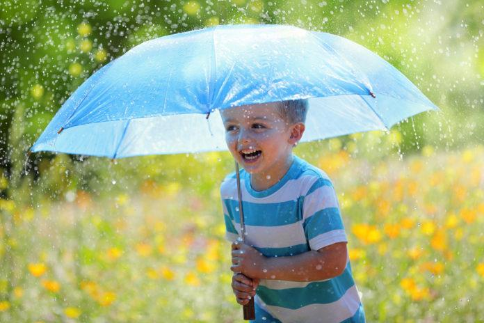Погода в Ульяновске 13 июля будет облачной, пройдет небольшой дождь