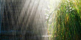 Ульяновские синоптики обещают 12 июля дождь