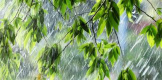 19 июля в Ульяновской области обещают жару и кратковременный дождь
