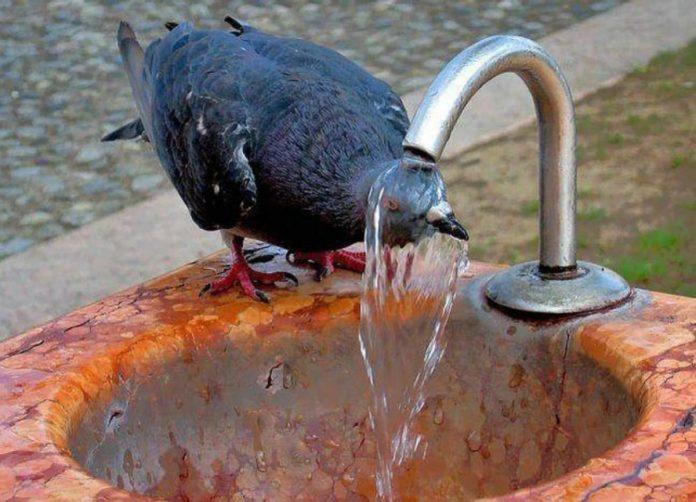 25 июля погода в Ульяновске обещает быть жаркой