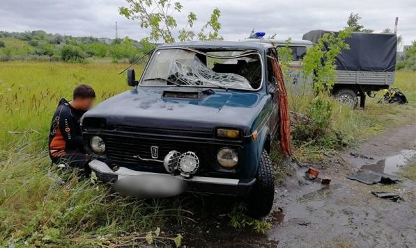 В Ульяновске с обрыва в реку улетела «Нива»: погибла семья