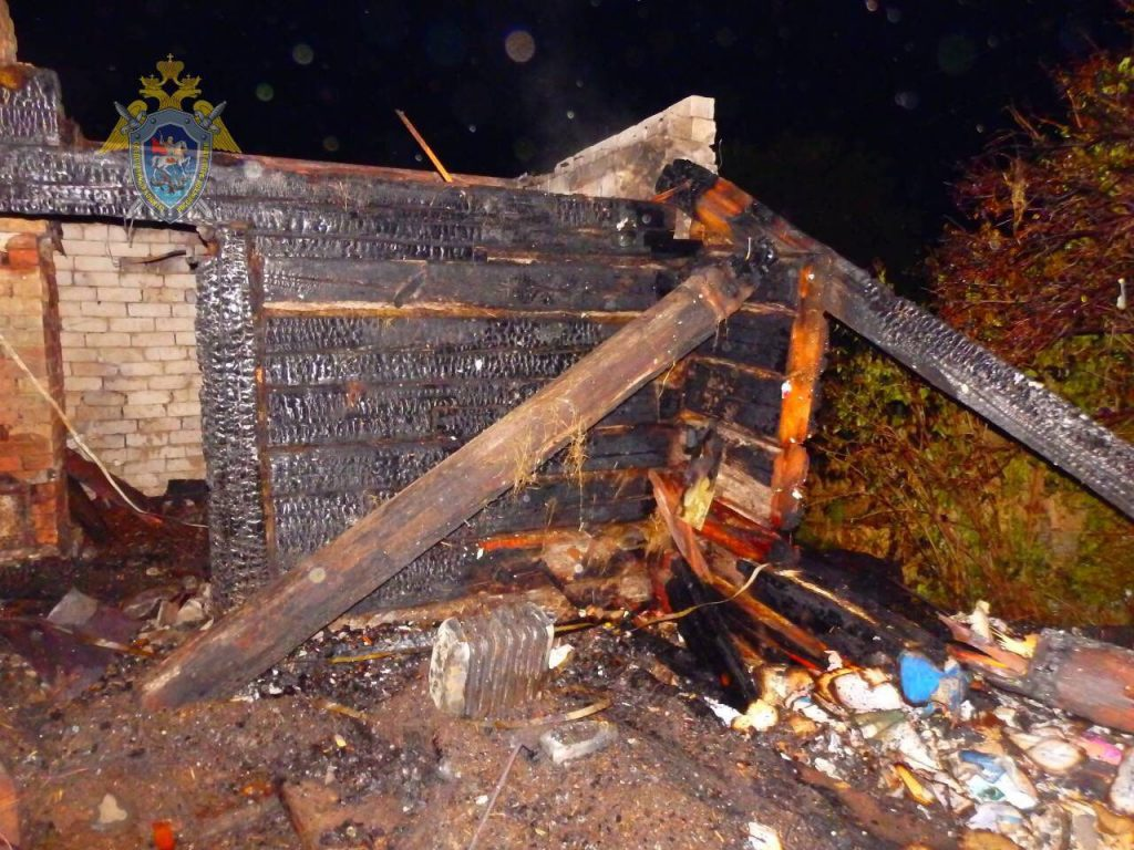 77-летняя женщина сгорела в своем доме в селе Карлинское: фото
