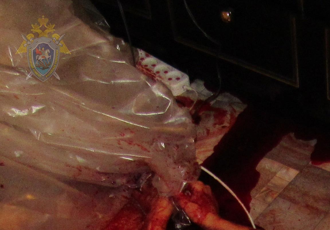Мужчина в состоянии аффекта убил бывшую жену обухом топора. Фото
