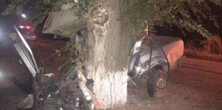 Ульяновский водитель «десятки» погиб после столкновения с деревом