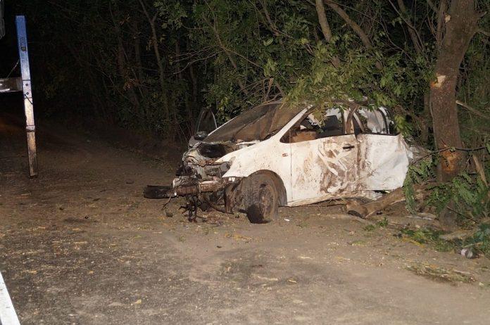 В Ульяновске водитель иномарки врезался в дерево