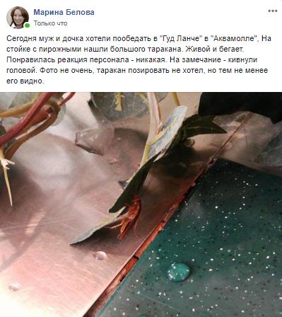 В ульяновском ресторане на стойке с пирожными посетители нашли таракана