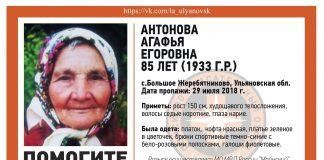 В Ульяновске разыскивают 85-летнюю пенсионерку